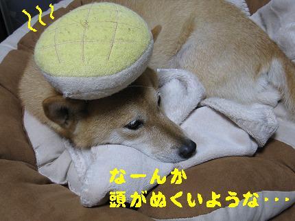 IMG_4412-2.jpg
