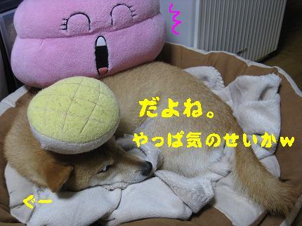 IMG_4416-4.jpg