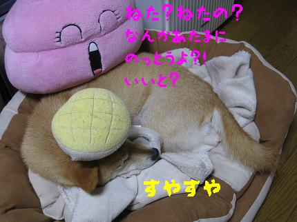 IMG_4418-3.jpg