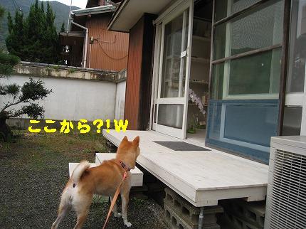 IMG_4442-2.jpg