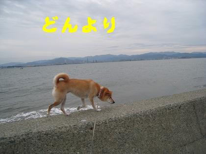 IMG_4484-3.jpg