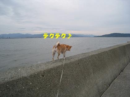 IMG_4487-2.jpg