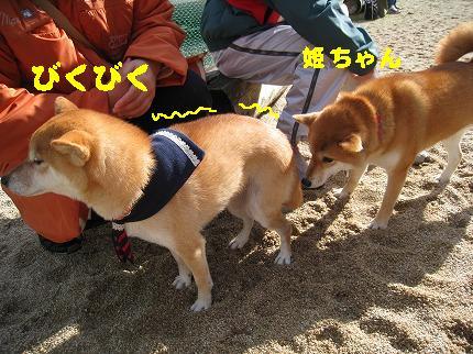 IMG_4745-2.jpg