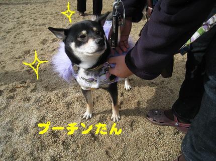 IMG_4748-2.jpg