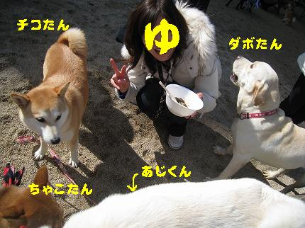 IMG_4781-2.jpg