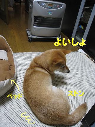 IMG_4814-2.jpg
