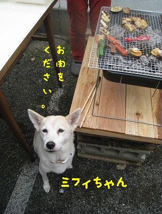 IMG_4868-2.jpg