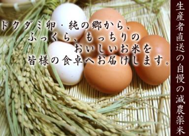 okome_top.jpg