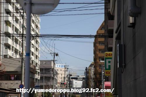 IMG_0633.jpg
