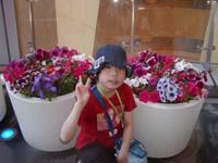 お花とまなこ♪