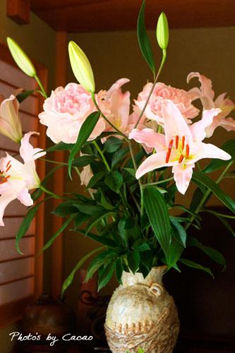 母に頂いたお花