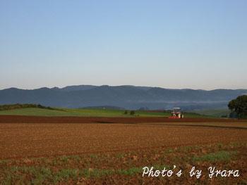 美瑛の丘とトラクター