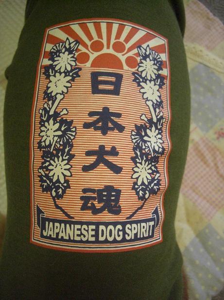 日本犬魂3