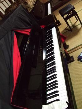 ゆりりんこ。 piano017