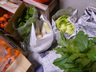 11.8野菜