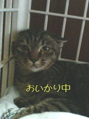 20061115234619.jpg