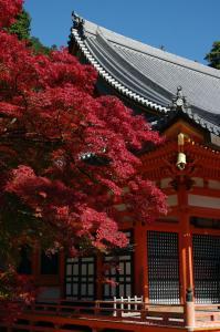 勝尾寺 2