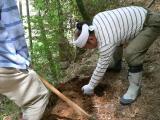 筍(たけのこ) 掘り方