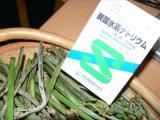 蕨(わらび) 調理法(レシピ)
