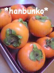 hanbunko.jpg