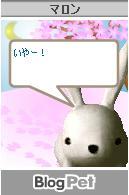 20050225095940.jpg