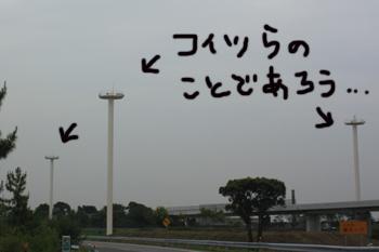 0614-8.jpg