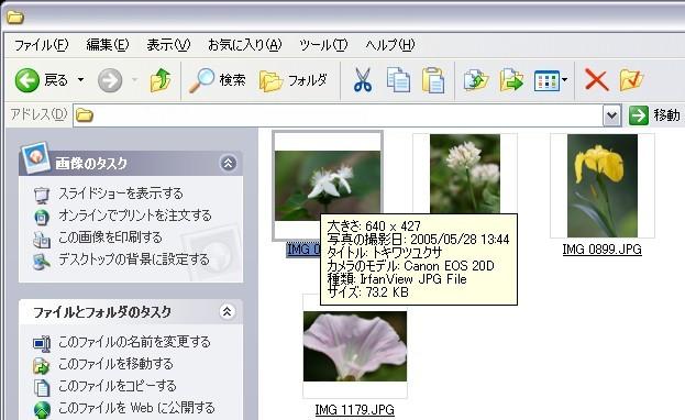 20050530092711.jpg