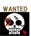 青ヒゲ海賊団