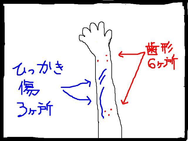 snap_chibitaseiko_2008122222454.jpg