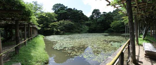 20090812_nihonmatsu_castle-11.jpg