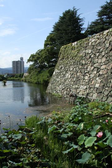 20090913_yodo_castle-01.jpg