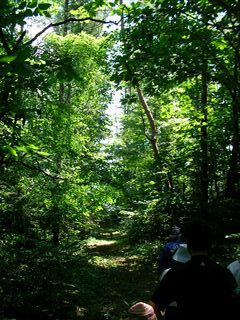 小岩井自然散策2