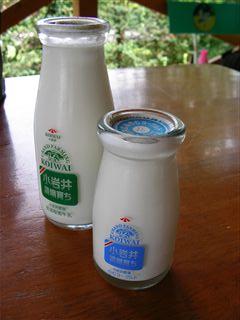 小岩井牛乳とヨーグルト