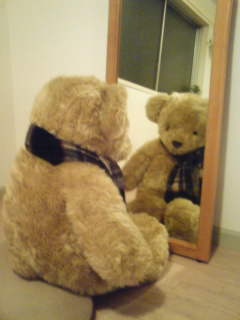 鏡の中のテディ・ベア