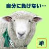 負けない羊