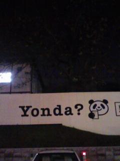 yondapanda.jpg