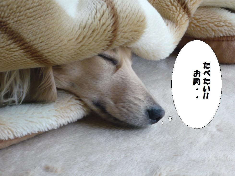 寝る子は・・・・