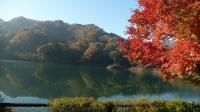 20091121-17宮ヶ瀬湖1
