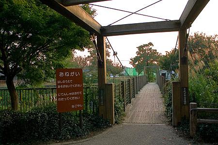 白沢渓谷の吊り橋