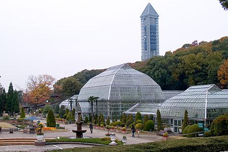 東山植物園の温室