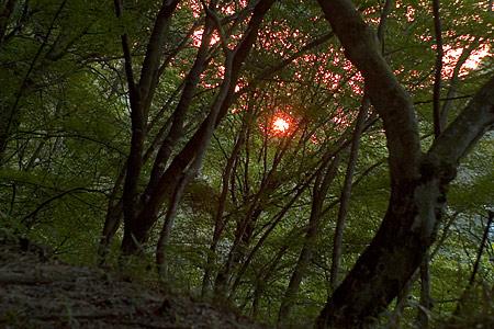 日没の岩屋堂
