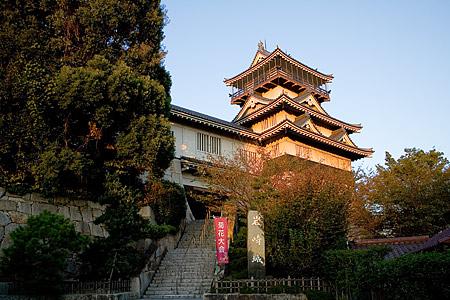 西日を浴びる岩崎城