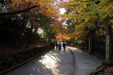 鎌倉文学館-2