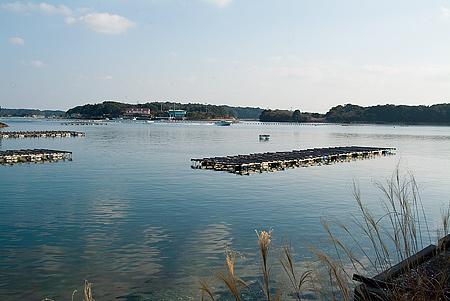 海と筏の風景