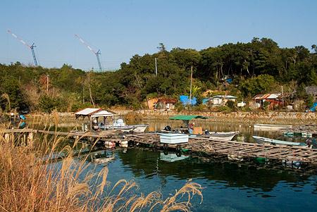 養殖筏の作業風景