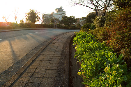賢島カラー9