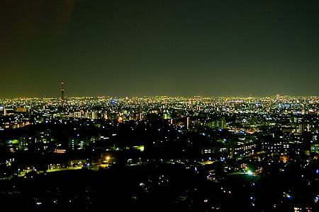 東山スカイタワーから