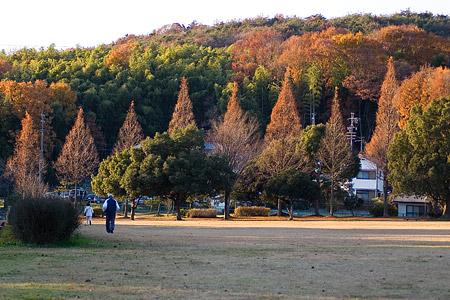 小幡緑地東-1