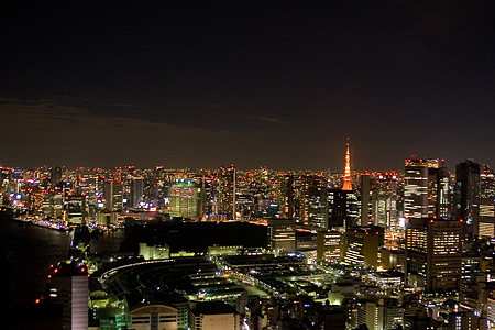 聖路加タワーからの夜景