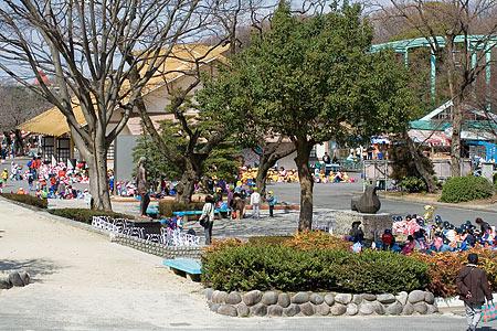 東山動物園の幼稚園生たち